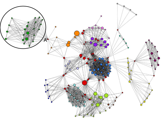 image showing importance of centrality  in a social network